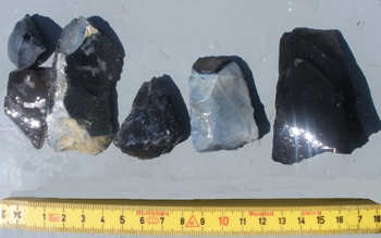 Close up of flint artefacts from Helnaes Bay